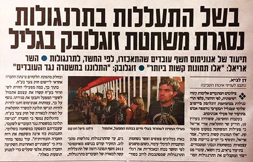 דיווח על הכתבה בישראל היום500
